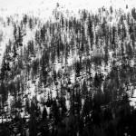 SMART - Exhibition «Montagne, entre sagesse et fragilités»